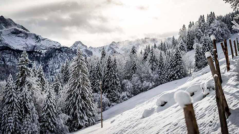 Andorra la Granja